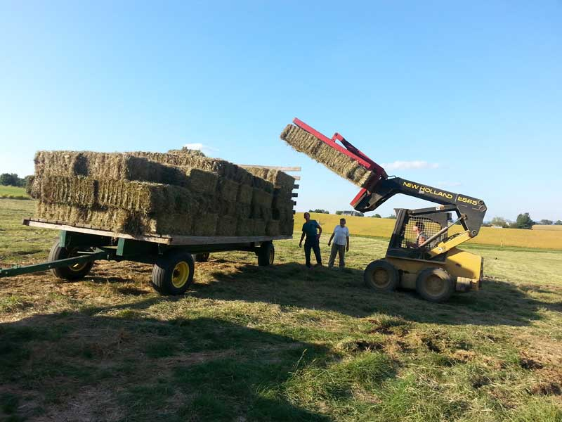 2.-Loading-10-bales-on-the-hay-wagon