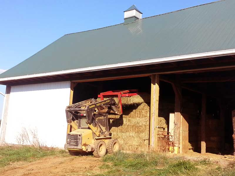 5.-Skid-Loader-putting-hay-in-bank-barn
