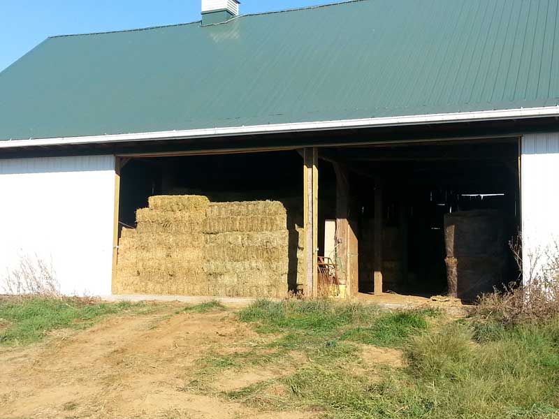 6.-Bank-Barn—with-2-doors-opened,-showing-stacked-hay