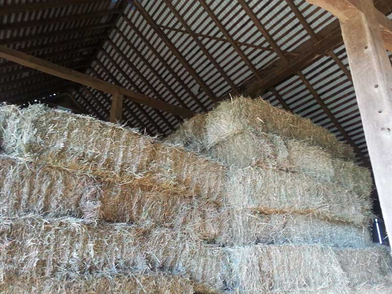 7.-Hay-stacked-in-bank-barn