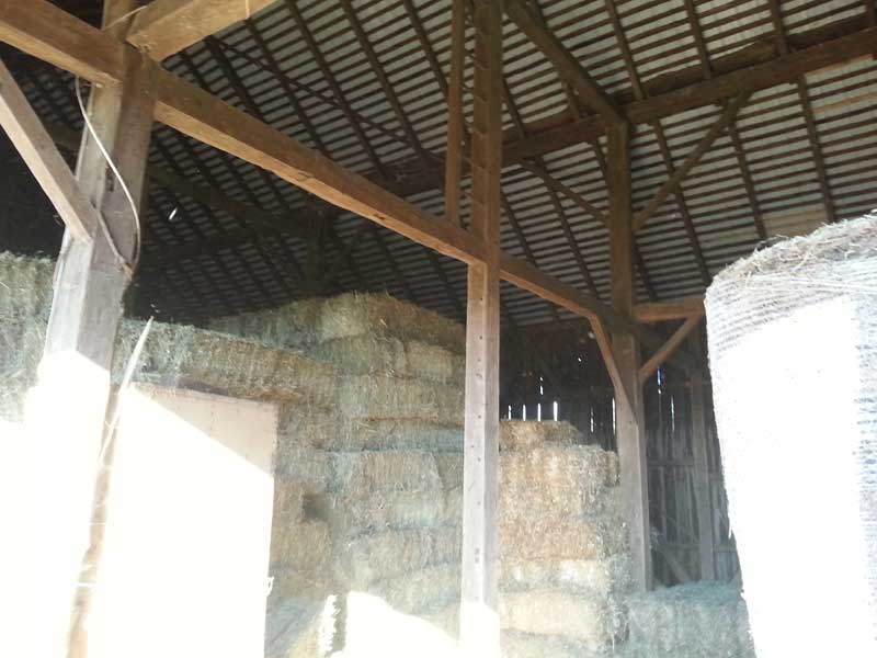 8.-Square-Bales-in-bank-barn