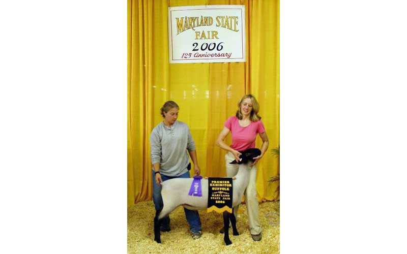 2006-MD-State-Fair-Lefty-Champ-Suffolk-Ram-as-a-late-Jr–Ram-Lamb-350×583