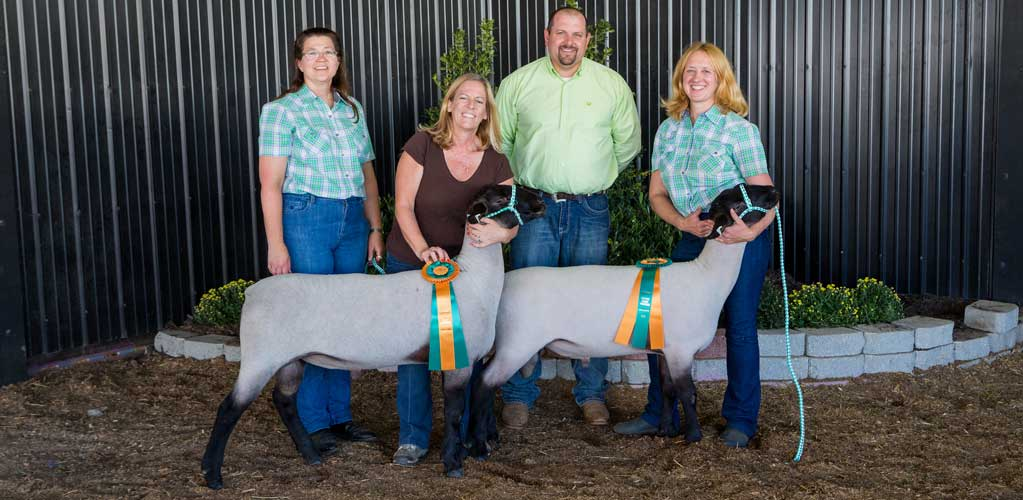 2015 Champion and Reserve Champion Rams